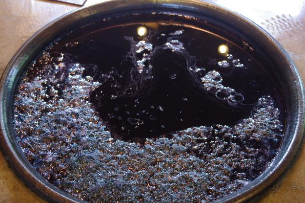 かめの中に「藍の華」と呼ばれる泡が浮かぶと元気な証拠